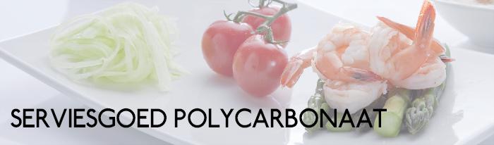 Serviesgoed polycarbonaat